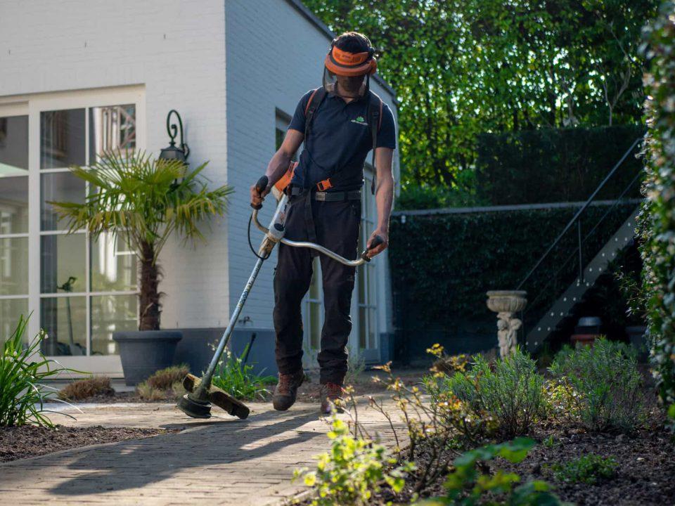 jardinero finiquito